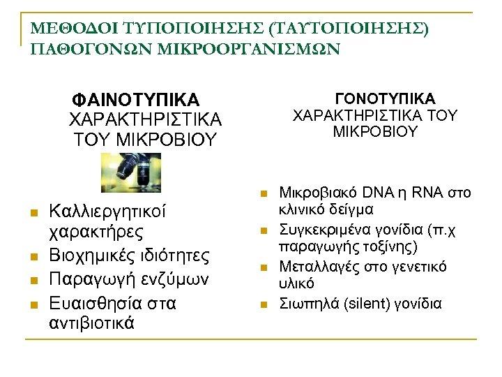 ΜΕΘΟΔΟΙ ΤΥΠΟΠΟΙΗΣΗΣ (ΤΑΥΤΟΠΟΙΗΣΗΣ) ΠΑΘΟΓΟΝΩΝ ΜΙΚΡΟΟΡΓΑΝΙΣΜΩΝ ΦΑΙΝΟΤΥΠΙΚΑ ΧΑΡΑΚΤΗΡΙΣΤΙΚΑ ΤΟΥ ΜΙΚΡΟΒΙΟΥ ΓΟΝΟΤΥΠΙΚΑ ΧΑΡΑΚΤΗΡΙΣΤΙΚΑ ΤΟΥ ΜΙΚΡΟΒΙΟΥ n
