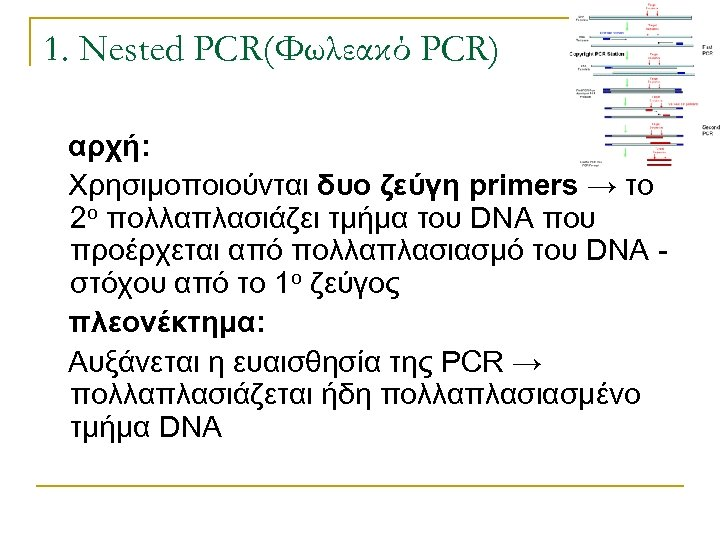 1. Nested PCR(Φωλεακό PCR) αρχή: Χρησιμοποιούνται δυο ζεύγη primers → το 2ο πολλαπλασιάζει τμήμα