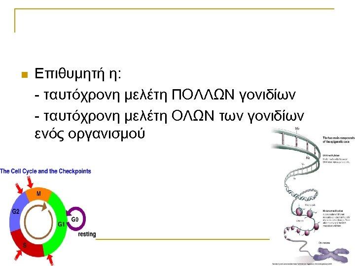 n Επιθυμητή η: - ταυτόχρονη μελέτη ΠΟΛΛΩΝ γονιδίων - ταυτόχρονη μελέτη ΟΛΩΝ των γονιδίων