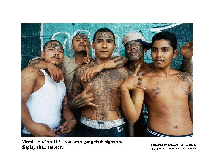 Members of an El Salvadoran gang flash signs and display their tattoos. Essentials Of