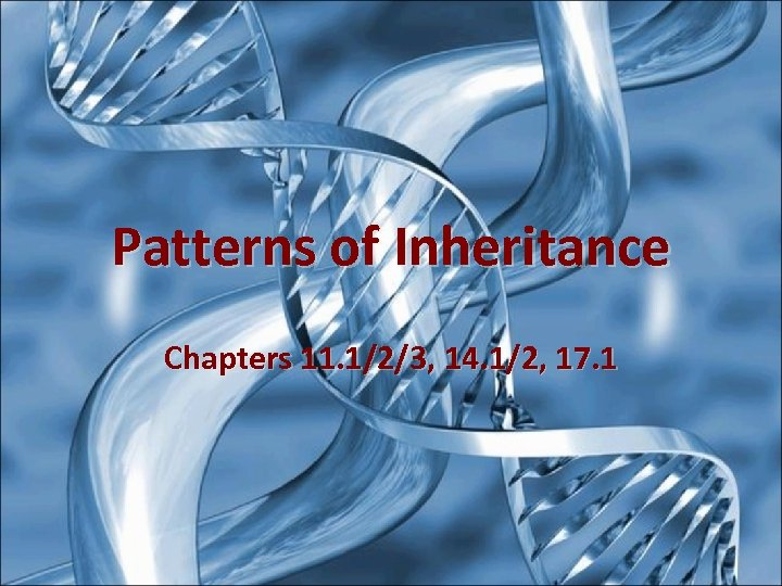 Patterns of Inheritance Chapters 11. 1/2/3, 14. 1/2, 17. 1