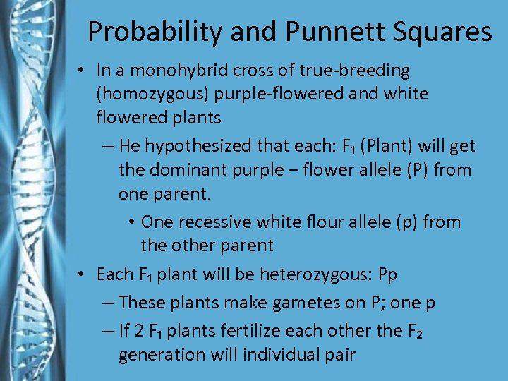 Probability and Punnett Squares • In a monohybrid cross of true-breeding (homozygous) purple-flowered and