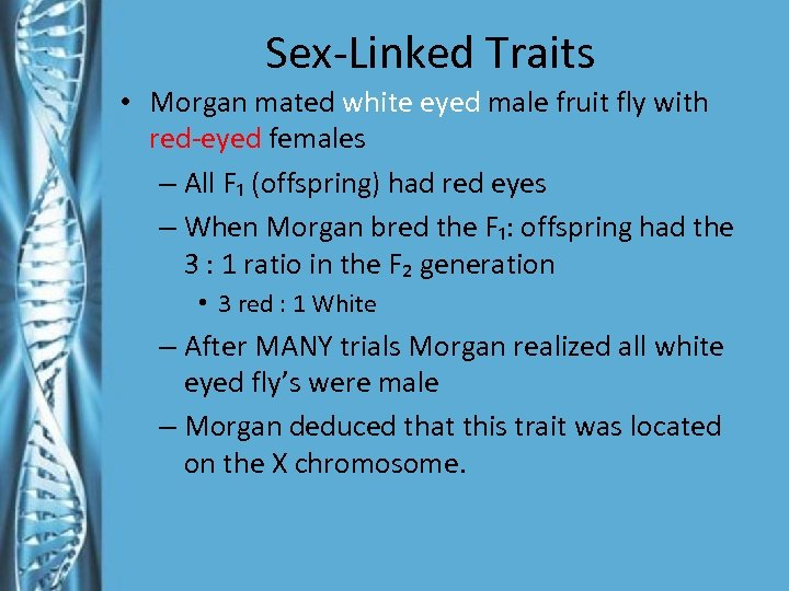 Sex-Linked Traits • Morgan mated white eyed male fruit fly with red-eyed females –