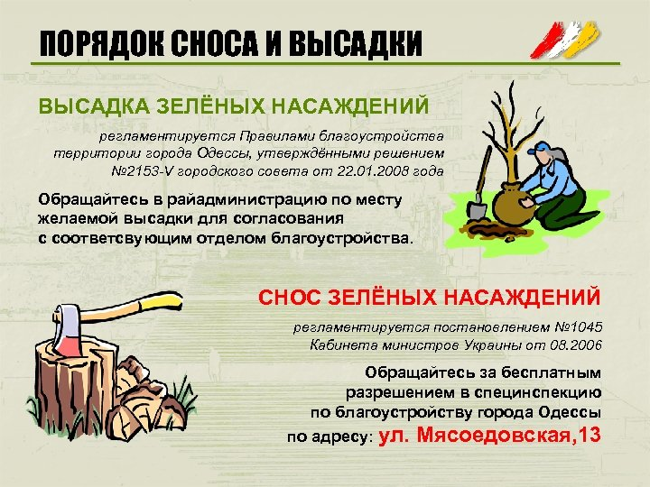 ПОРЯДОК СНОСА И ВЫСАДКА ЗЕЛЁНЫХ НАСАЖДЕНИЙ регламентируется Правилами благоустройства территории города Одессы, утверждёнными решением