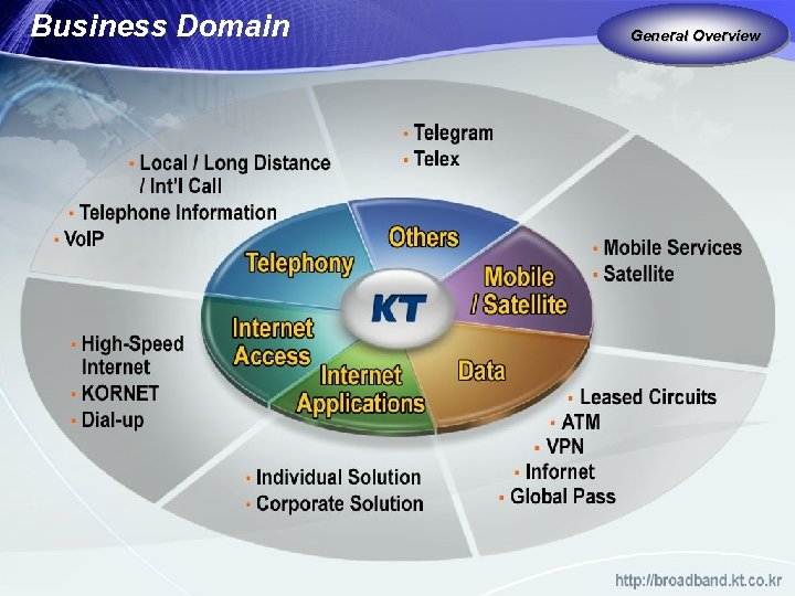 Business Domain General Overview