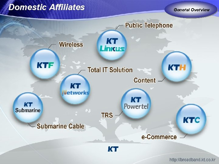 Domestic Affiliates General Overview