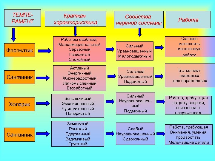 ТЕМПЕРАМЕНТ Краткая характеристика Свойства нервной системы Работа Флегматик Работоспособный, Малоэмоциональный Серьёзный Надёжный Спокойный Сильный