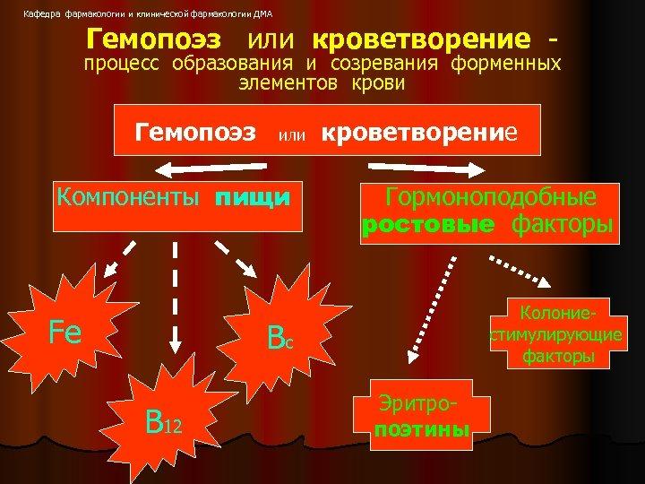 Кафедра фармакологии и клинической фармакологии ДМА Гемопоэз или кроветворение - процесс образования и созревания