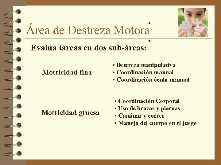 • Área de Destreza Motora Evalúa tareas en dos sub-áreas: • Motricidad fina