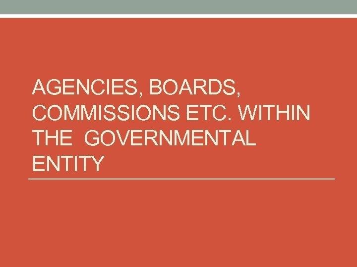 AGENCIES, BOARDS, COMMISSIONS ETC. WITHIN THE GOVERNMENTAL ENTITY