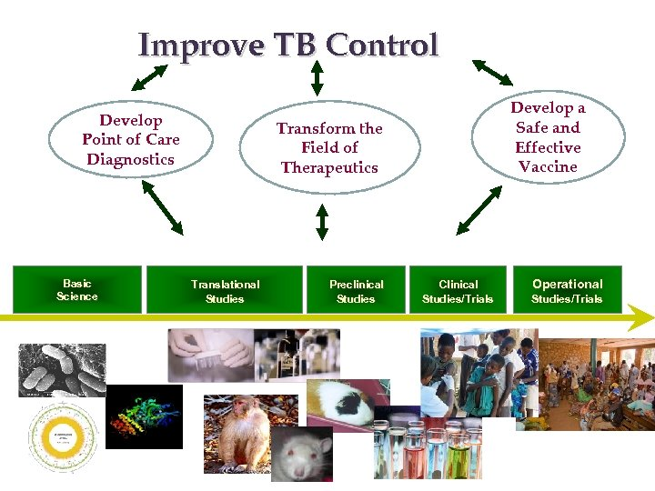 Improve TB Control Develop Point of Care Diagnostics Basic Science Develop a Safe and