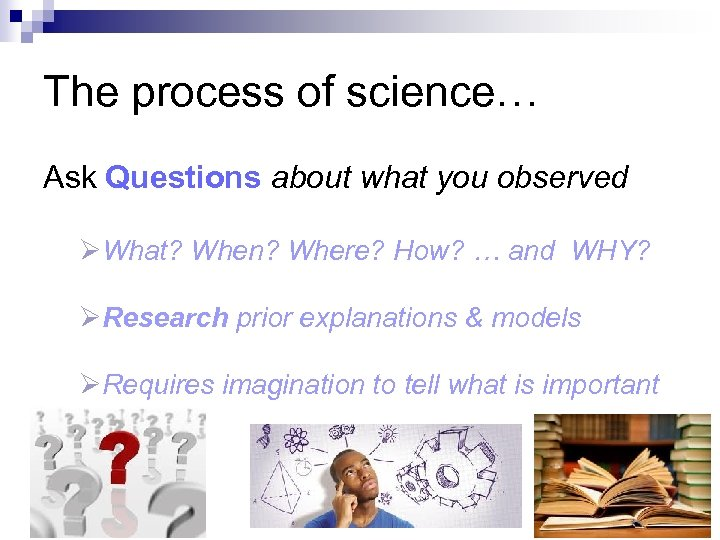 The process of science… Ask Questions about what you observed ØWhat? When? Where? How?