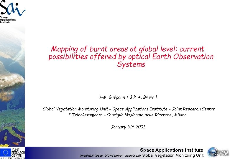 Mapping of burnt areas at global level: current possibilities offered by optical Earth Observation