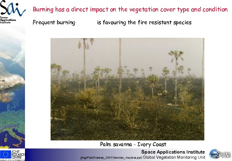 Burning has a direct impact on the vegetation cover type and condition Frequent burning