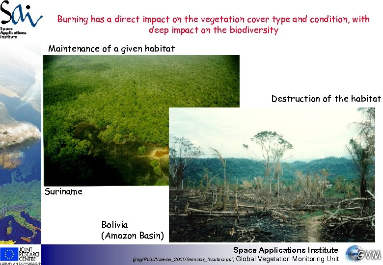 Burning has a direct impact on the vegetation cover type and condition, with deep