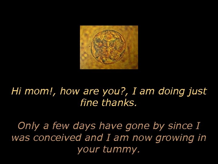 Hi mom!, how are you? , I am doing just fine thanks. Only a