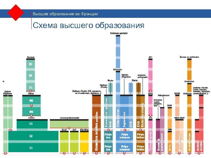 Высшее образование во Франции Схема высшего образования