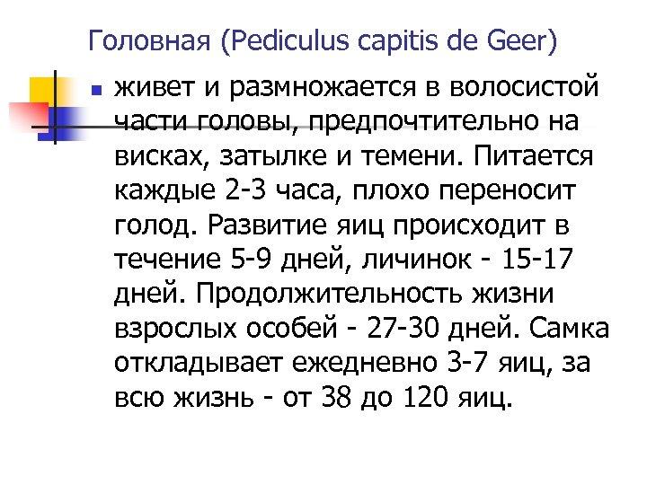 Головная (Pediculus capitis de Geer) n живет и размножается в волосистой части головы, предпочтительно