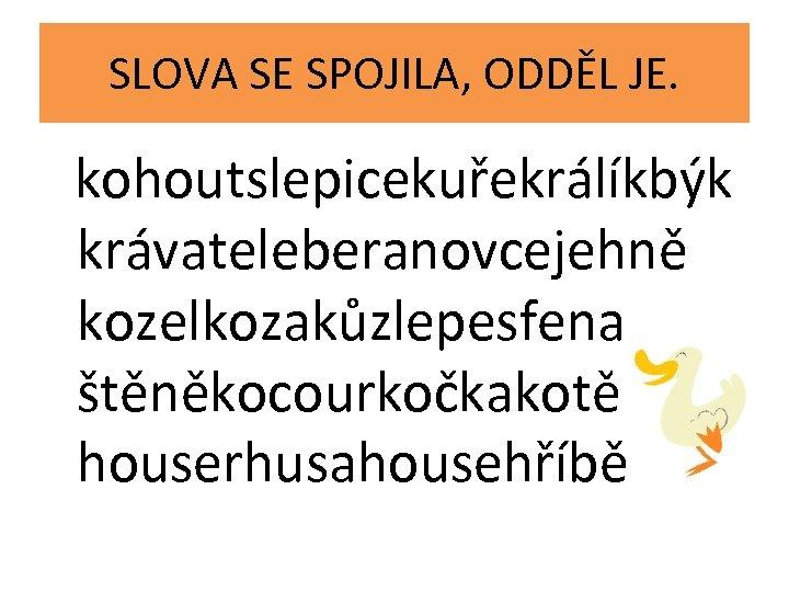 SLOVA SE SPOJILA, ODDĚL JE. kohoutslepicekuřekrálíkbýk krávateleberanovcejehně kozelkozakůzlepesfena štěněkocourkočkakotě houserhusahousehříbě