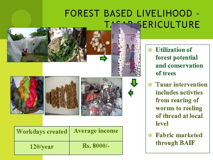 FOREST BASED LIVELIHOOD – TASAR SERICULTURE Workdays created Average income 120/year Rs. 8000/- Utilization