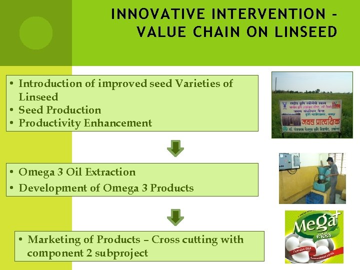 INNOVATIVE INTERVENTION – VALUE CHAIN ON LINSEED • Introduction of improved seed Varieties of