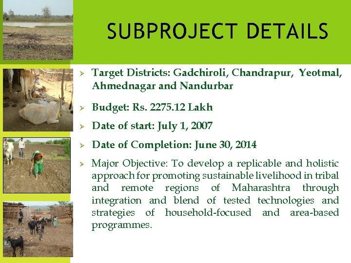 SUBPROJECT DETAILS Ø Target Districts: Gadchiroli, Chandrapur, Yeotmal, Ahmednagar and Nandurbar Ø Budget: Rs.