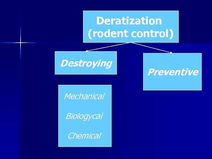 Deratization (rodent control) Destroying Mechanical Biologycal Chemical Preventive
