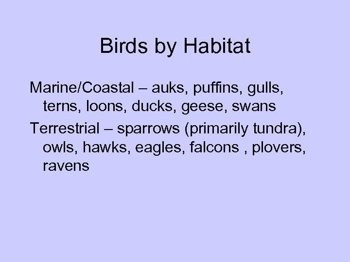 Birds by Habitat Marine/Coastal – auks, puffins, gulls, terns, loons, ducks, geese, swans Terrestrial
