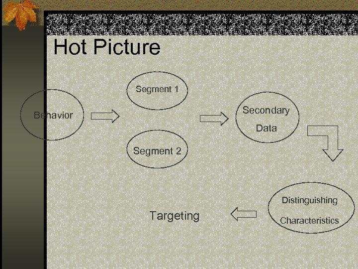 Hot Picture Segment 1 Secondary Behavior Data Segment 2 Distinguishing Targeting Characteristics