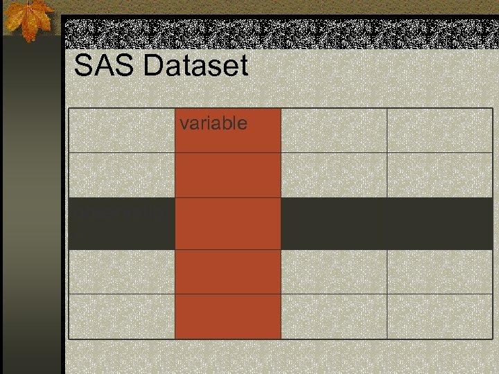 SAS Dataset variable observatio n