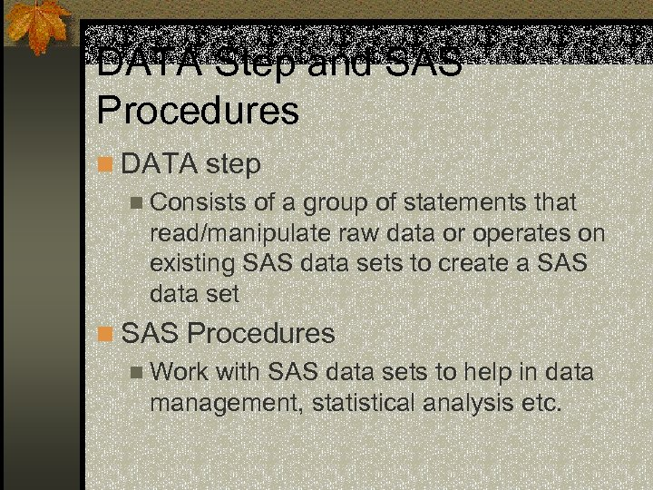 DATA Step and SAS Procedures n DATA step n Consists of a group of