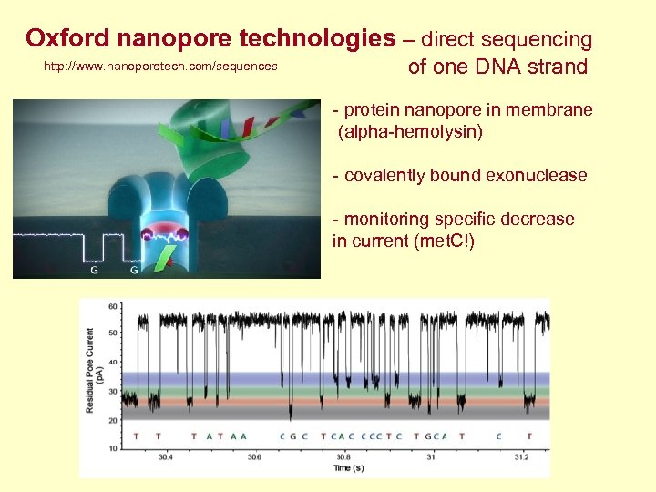 Oxford nanopore technologies – direct sequencing http: //www. nanoporetech. com/sequences of one DNA strand