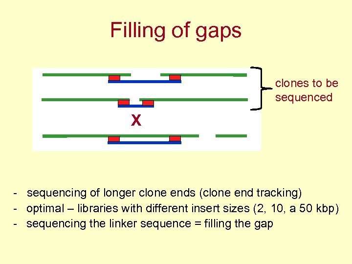Filling of gaps clones to be sequenced X - sequencing of longer clone ends