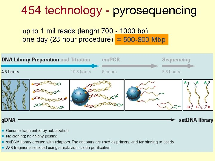 454 technology - pyrosequencing up to 1 mil reads (lenght 700 - 1000 bp)