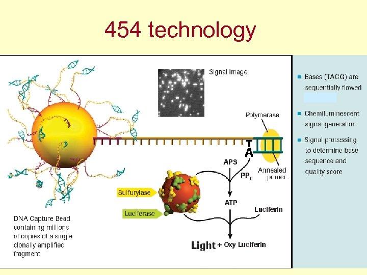 454 technology