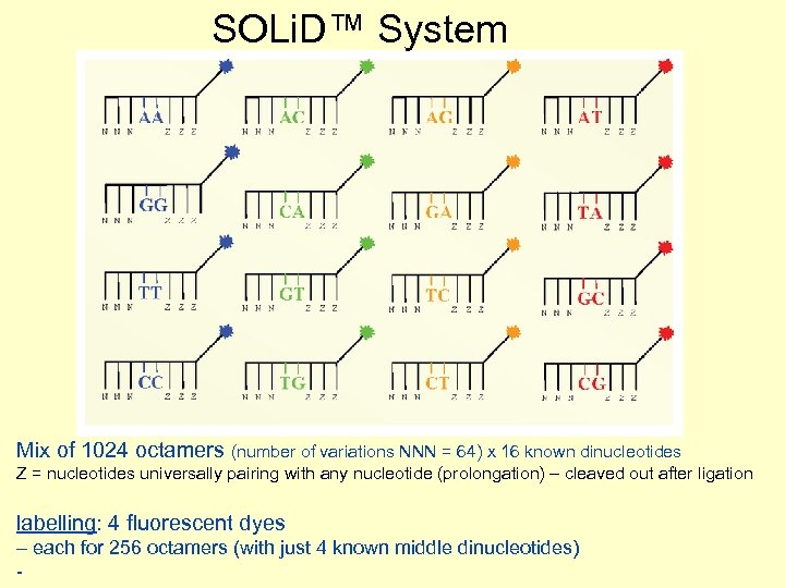 SOLi. D™ System Mix of 1024 octamers (number of variations NNN = 64) x