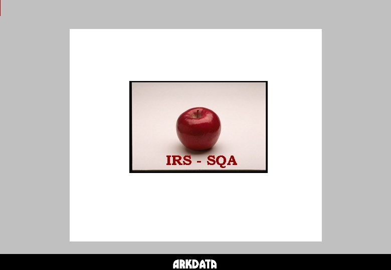IRS - SQA
