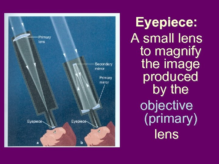 Eyepiece: A small lens to magnify the image produced by the objective (primary) lens