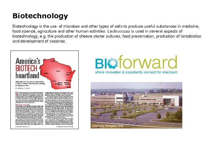 Biotechnology is the use of microbes and other types of cells to produce useful