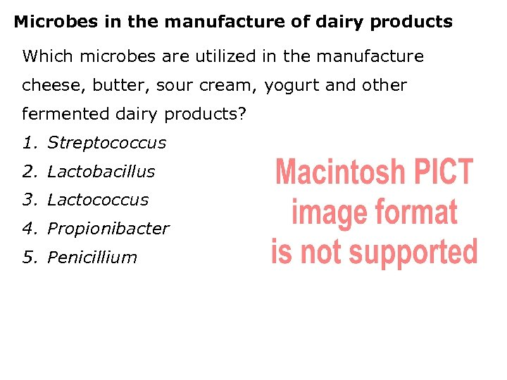 Microbes in the manufacture of dairy products Which microbes are utilized in the manufacture