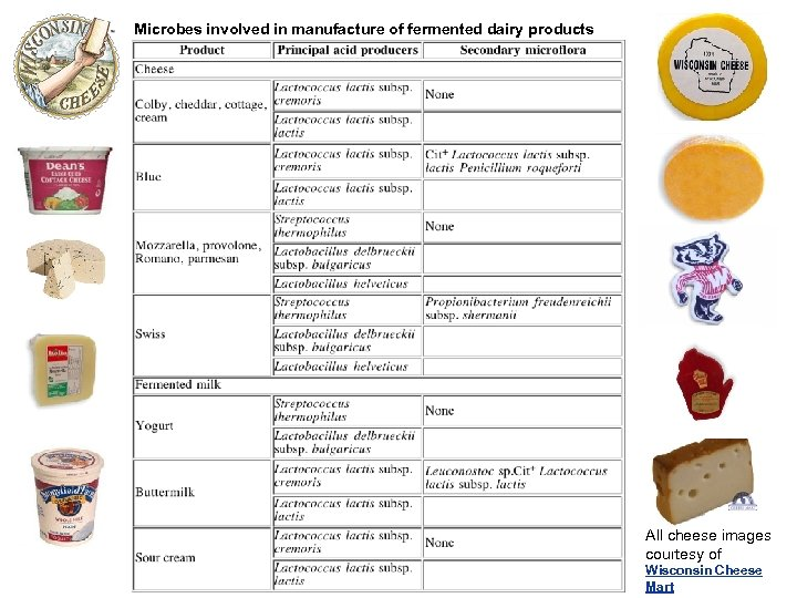 Microbes involved in manufacture of fermented dairy products All cheese images courtesy of Wisconsin