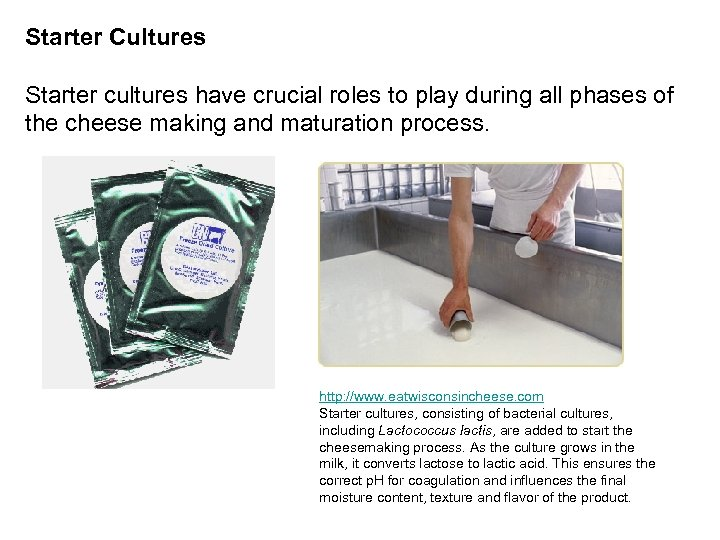 Starter Cultures Starter cultures have crucial roles to play during all phases of the