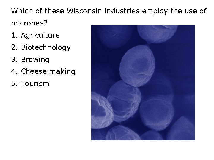 Which of these Wisconsin industries employ the use of microbes? 1. Agriculture 2. Biotechnology