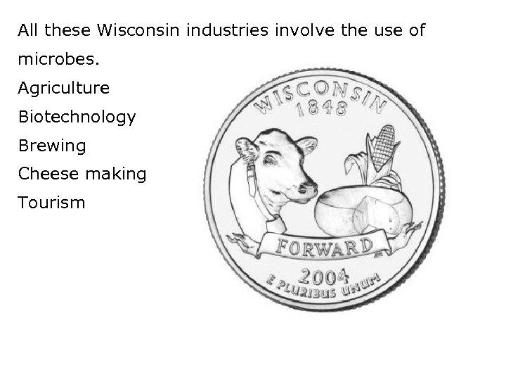 All these Wisconsin industries involve the use of microbes. Agriculture Biotechnology Brewing Cheese making