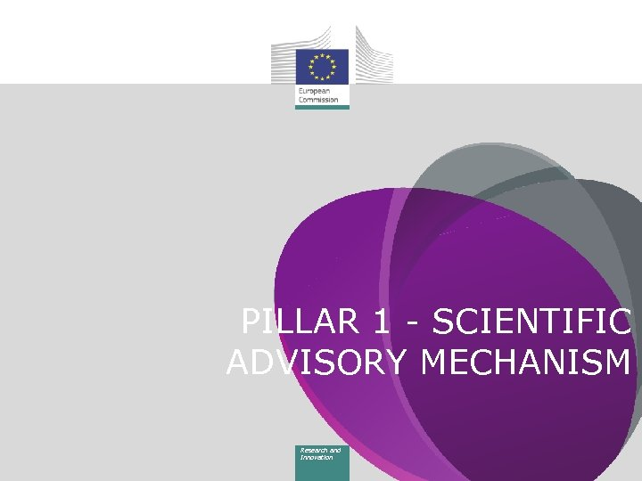PILLAR 1 - SCIENTIFIC ADVISORY MECHANISM Research and Innovation