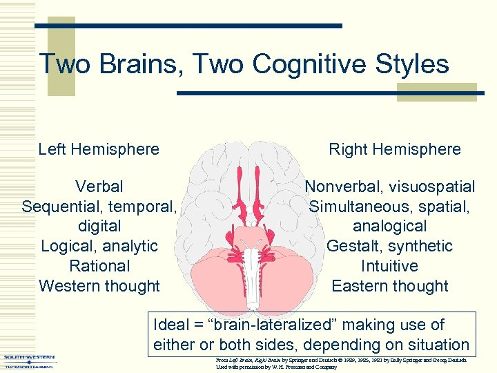 Two Brains, Two Cognitive Styles Left Hemisphere Verbal Sequential, temporal, digital Logical, analytic Rational
