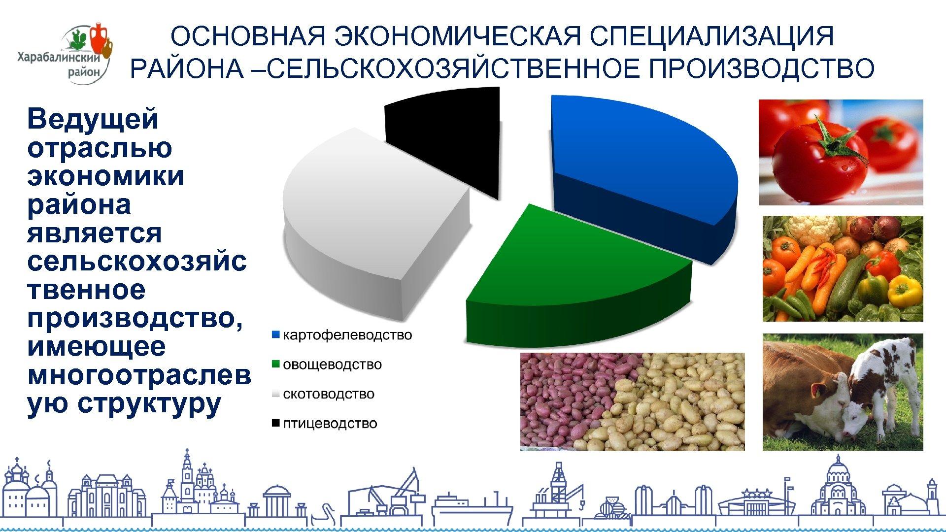 ОСНОВНАЯ ЭКОНОМИЧЕСКАЯ СПЕЦИАЛИЗАЦИЯ РАЙОНА –СЕЛЬСКОХОЗЯЙСТВЕННОЕ ПРОИЗВОДСТВО Ведущей отраслью экономики района является сельскохозяйс твенное производство,