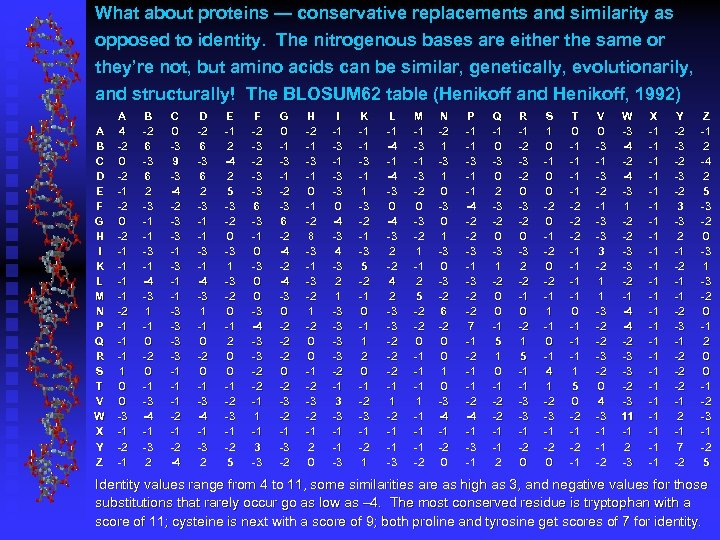 What about proteins — conservative replacements and similarity as opposed to identity. The nitrogenous