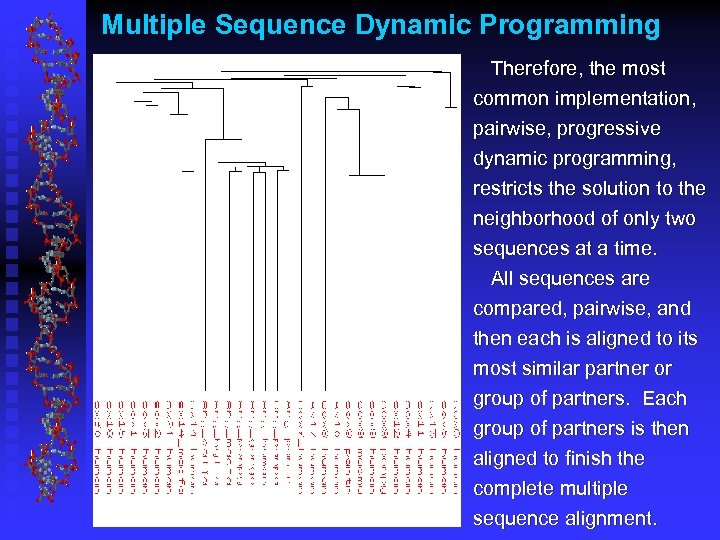 Multiple Sequence Dynamic Programming Therefore, the most common implementation, pairwise, progressive dynamic programming, restricts