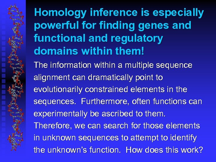 Homology inference is especially powerful for finding genes and functional and regulatory domains within